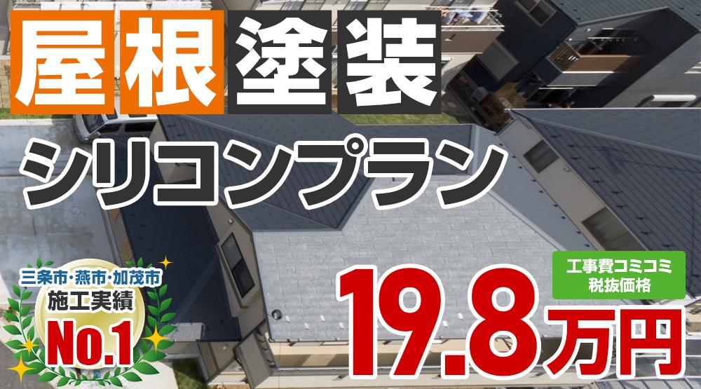 シリコンプラン塗装 198000万円