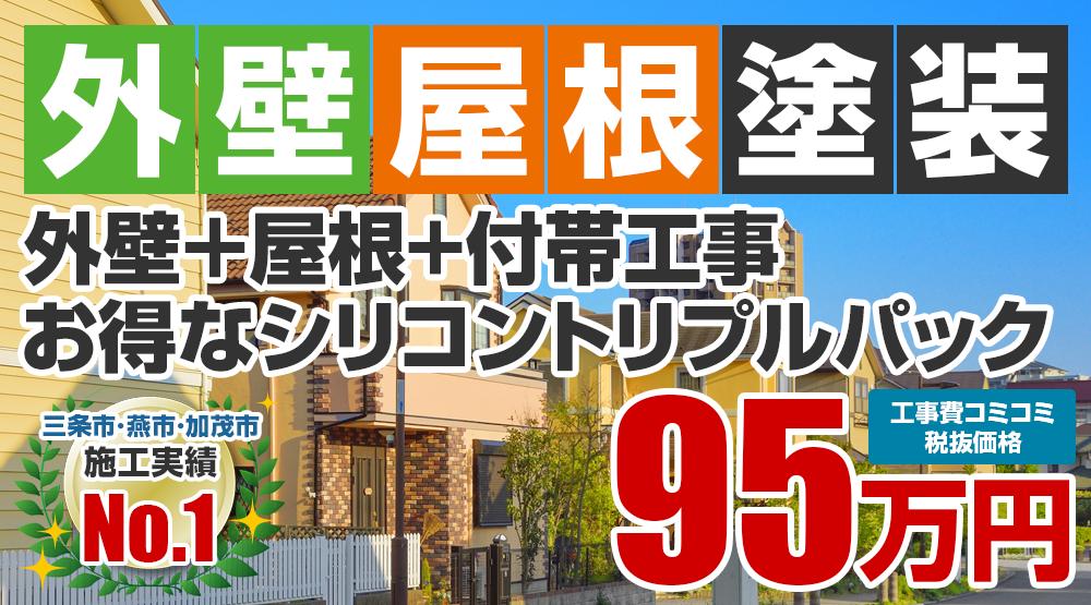 お得な外壁屋根塗装Wパック塗装 95万円